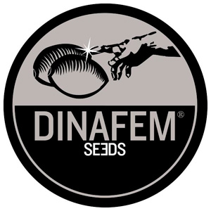 Dinafem Seeds Collector 27 samonakvétací mix