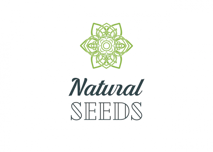 Natural Seeds Mandalay Auto 6ks