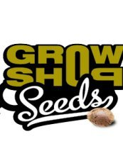Growshop Seeds Auto Blueberry 5ks