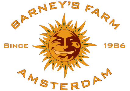 Barney´s Farm Laughing Buddha 10ks