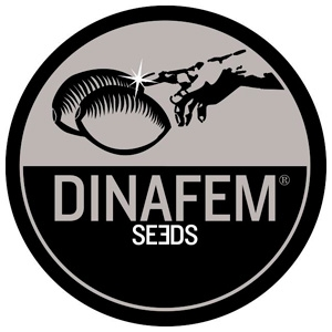 Dinafem Seeds Critical+ 2.0 10ks